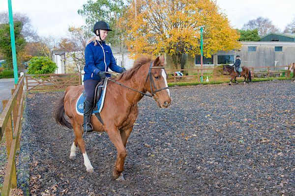 Snowdonia Riding Stables 19th November
