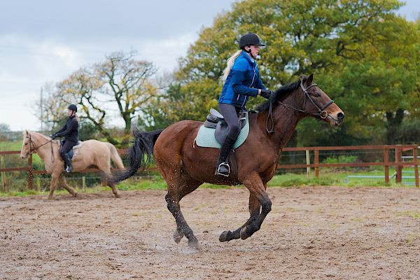 Snowdonia Riding Stables 12th November